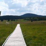 Mystická krása Krušných hor: Podél Blatenského příkopu po stopách těžby cínu
