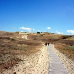 Kurská kosa: Perla litevského pobřeží s jantarovým pokladem