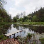 Jihočeský kraj na Moravě: Podél Dyje po stopách mlynářů a života vyder na Dačicku