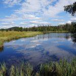 Kde Mrtvý rybník pro cínové doly vytváří atmosféru Skandinávie