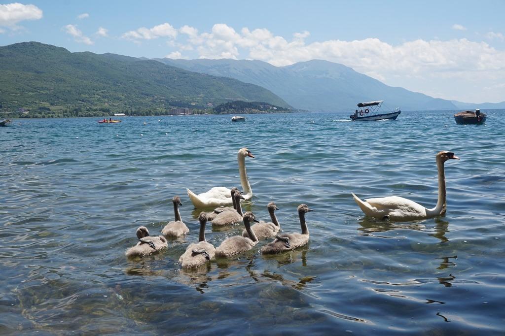 Ohridské-jezero-6
