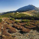 Krkonošský národní park slaví půlkulatiny!