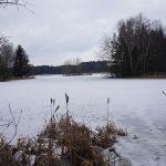Mykologická rezervace na hrázi rybníka pod sněhovým polštářem