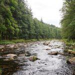 Přírodní rezervace Zemská brána má rozlohu necelých 90 hektarů