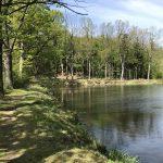 Kolem rybníků přes kamencové moře na rozhlednu u Slatiňan