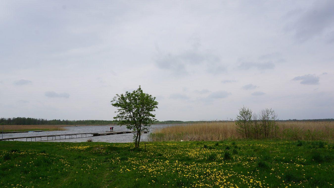 Poleski-park-narodowy-8