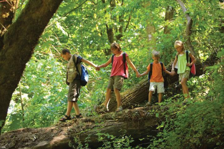 Take-A-Hike-To-A-Rainforest