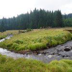 Oblastí zaniklých obcí podél Rolavy v Krušných horách