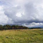 Estonská Saaremaa: drsný Balt bez kompromisů