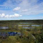K úžasným rašeliništním jezerům na severu Estonska