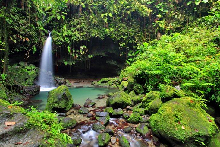 dominica-waterfall