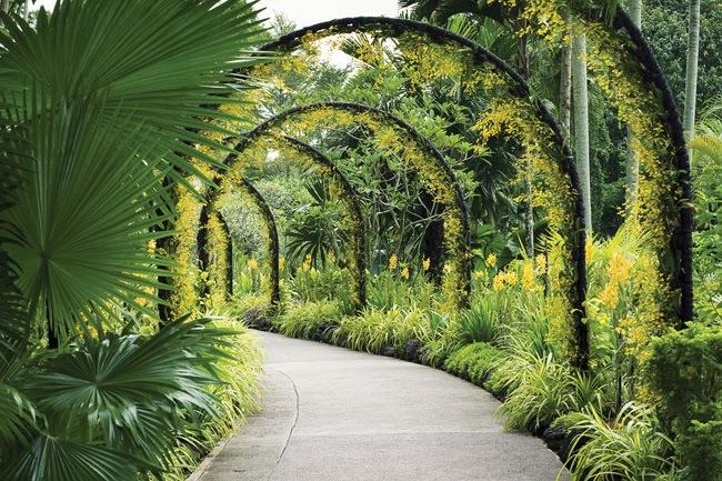 Botanical-Garden-Path-82141160