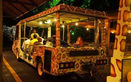 Singapore-Night-Safari-550x343