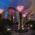5 míst, kam zajít v Singapuru