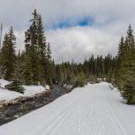 Jarní prázdniny na Šumavě? Sjezdaři si zalyžují, běžkaři musí jezdit opatrně a na starých lyžích