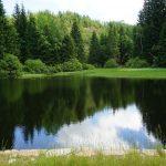 K rybníkům nad Jáchymovem