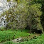 Moravské Švýcarsko: Hluboké údolí, mohutná skaliska, voda z nitra Země