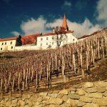 Víno, hrady, zámky