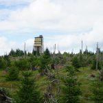 Šumavské putování: Nad Prášily k ledovcovému jezeru, Poledníku a malebnému potoku