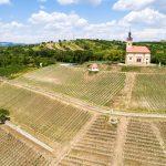Jižní Morava vinařská a cyklistická